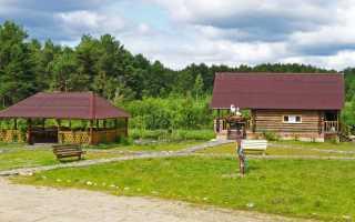 База отдыха Остров Вологодская область