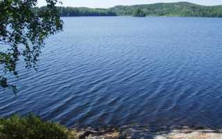 Опубликован новый обзор по базам отдыха Ленинградской области