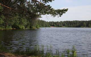 Пляжи Санкт-Петербурга и Ленинградской области