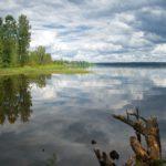 Озеро Зеркальное Ленинградская область