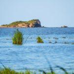 Рыбалка на озере ханка