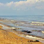 Пляж на Рыбинском водохранилище Лето