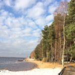 Пляж в Коприно на Рыбинском водохранилище